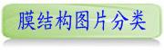 雷竞技网站图片分类